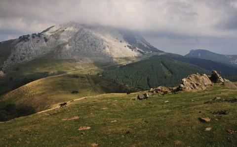 Descubra la selección de actividades ofrecida por el Hotel Harretchea alrededor del País Vasco.